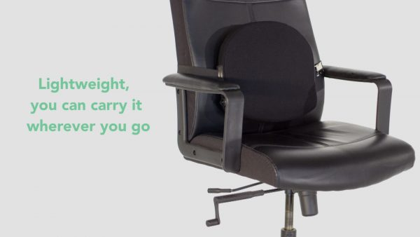 Travel Lumbar Back Support on Office Chair